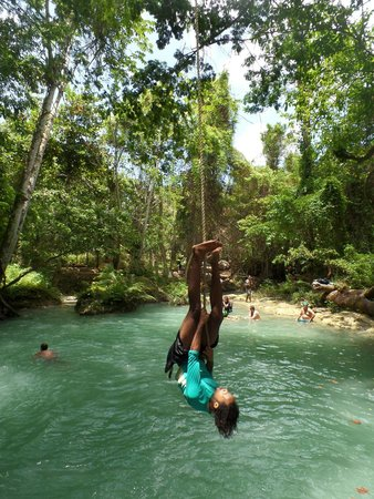 Island Gully Falls: the rope swing
