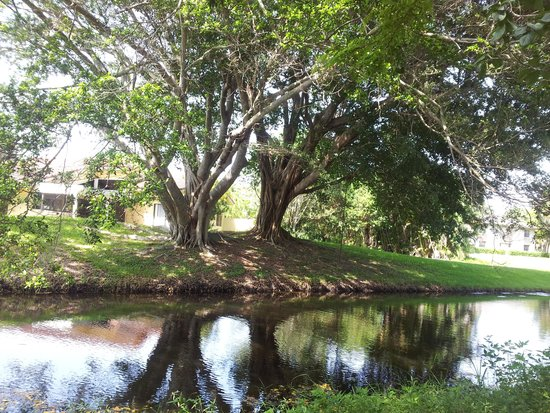 Deerfield Beach Arboretum: f1