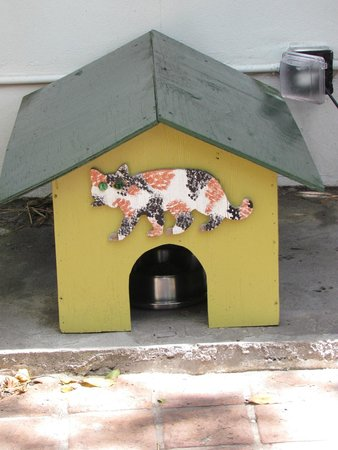 Maison d'Ernest Hemingway : One of the many cat houses on the Hemmingway property