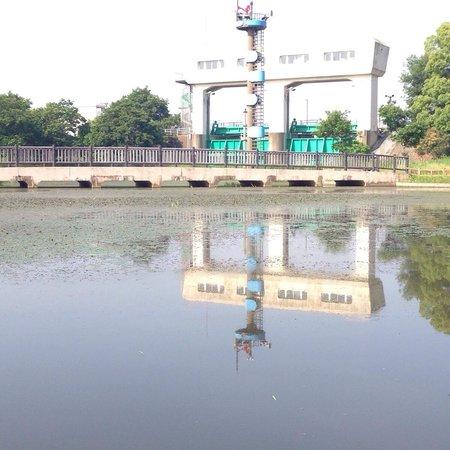 Daito, Япония: 池の周囲でのんびり