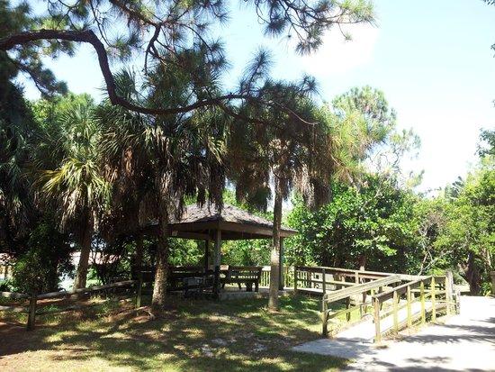 Deerfield Beach Arboretum: f4