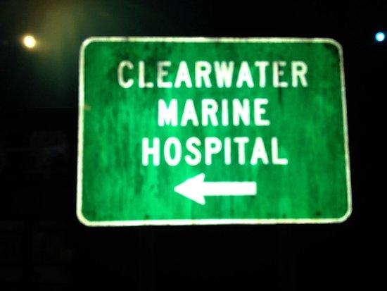Clearwater Marine Aquarium: Clearwater aquarium