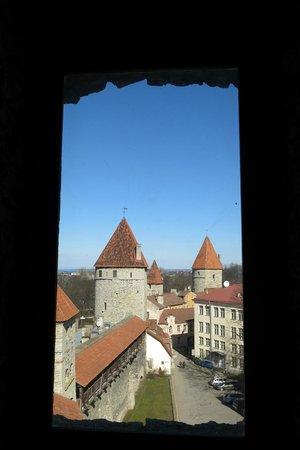Tallinn Old Town: Desde una torre de la muralla