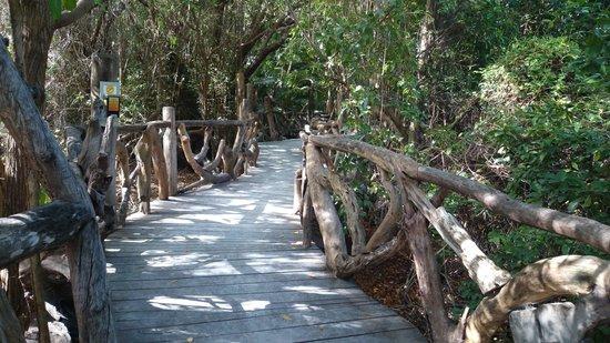 Sandos Caracol Eco Resort: beautiful trails