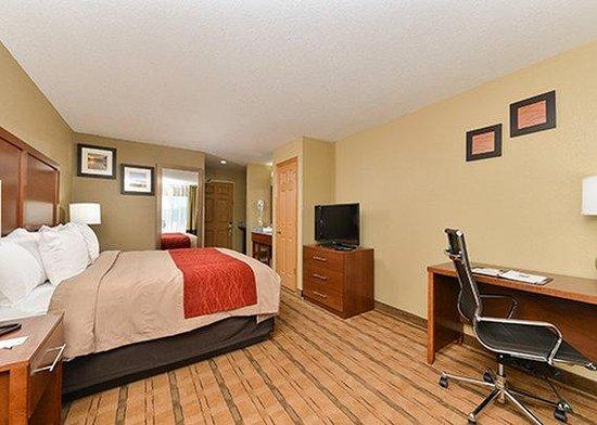 Comfort Inn & Suites: Guest Room