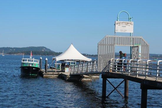Harbourfront Walkway: Ferries to New Castle Islands