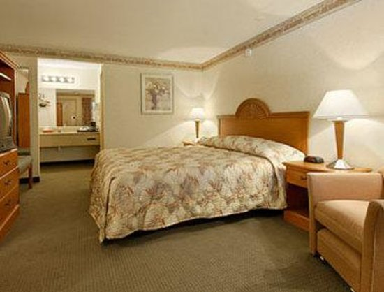 Ramada Cleveland Airport West: Standard King Bed Room