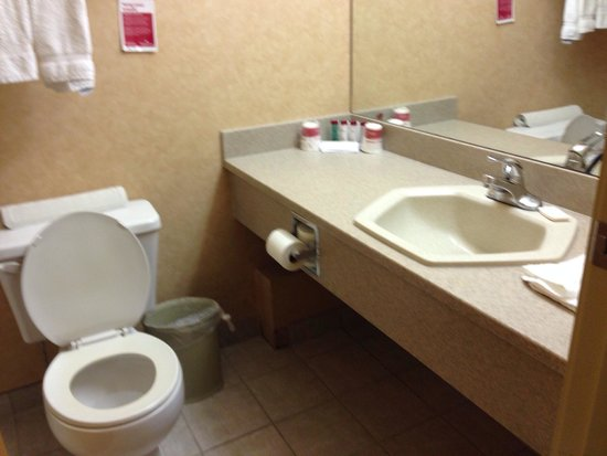Ramada Canmore: Bathroom is small!