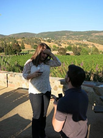 Napa Valley Horse Company: Perfect scenery for a proposal