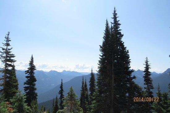 Mount Rainier : More vistas
