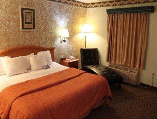 Travelodge San Antonio Lackland: 1 Bed Guest Room