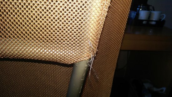 Inn at Laurel Point: Loose threads on chair