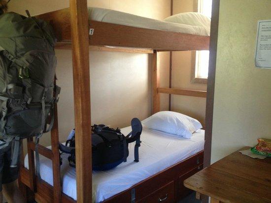 Dirty Mcnasty's Hostel: bunks!