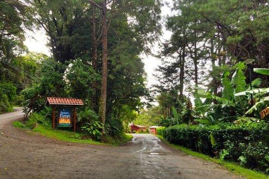 Hotel Fonda Vela: Entrance