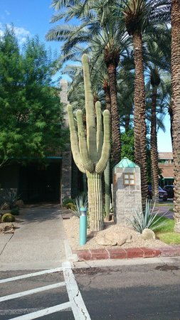 Hyatt Regency Scottsdale Resort and Spa at Gainey Ranch: ENTRANCE TO THE HOTEL WITH A GIANT FANTASTIC CACTUS