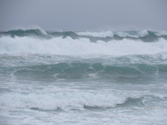 Bondi to Coogee Beach Coastal Walk: Massive waves off Bondi Beach in winter