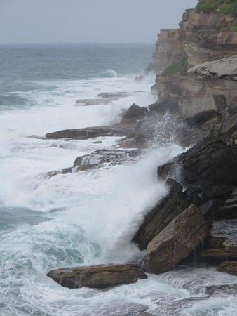 Bondi to Coogee Beach Coastal Walk: The power of the Pacific off Bondi coaster walk