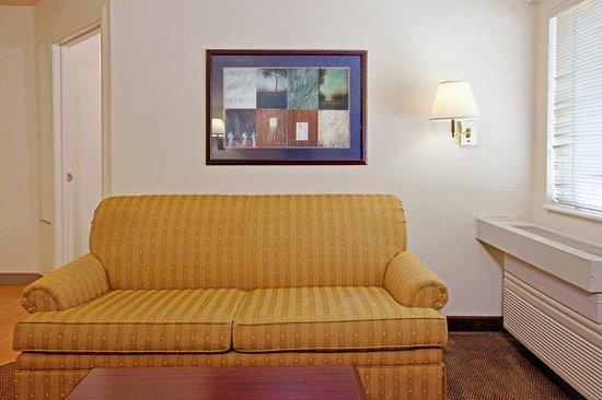 Candlewood Suites Orange County, Irvine Spectrum: Sleeper Sofa