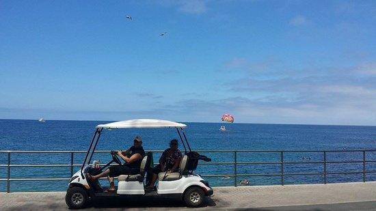 Catalina Expeditions  Tours: Golf cart- Parasailing