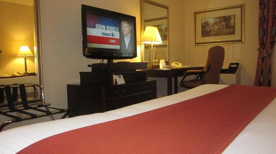 Quality Inn & Suites Mississauga: Deluxe King Room