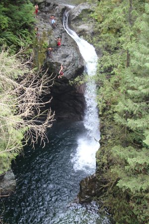 Lynn Canyon Park: Water Fall