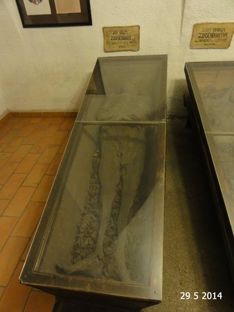 Capuchin Monastery and Vault : The oldest preserved corpse
