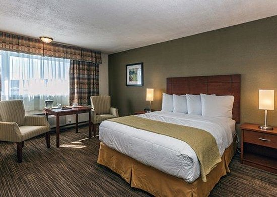 Quality Inn & Suites Matane: CNNQ