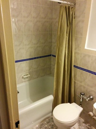 Hotel Carter : Chuveiro/Banheira