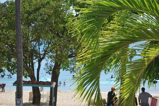 Secret Harbour Beach Resort : View 2