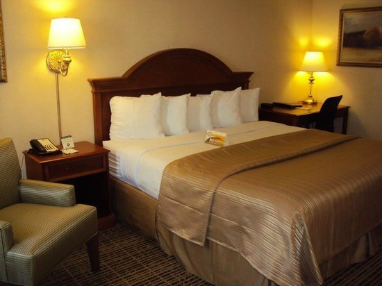 Quality Inn: King Room
