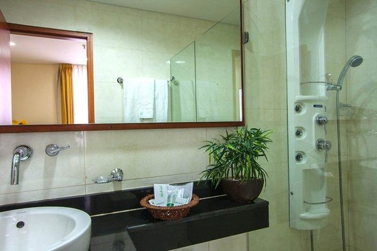 Hotel Andes Plaza: Hydro massage shower (Superior Room)