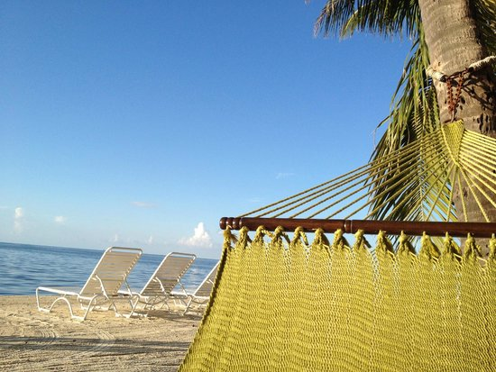 Amara Cay Resort: Hammocks are heavenly
