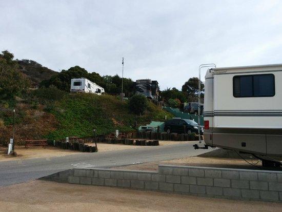 Malibu Beach RV Park: Área