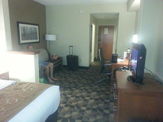 photo0.jpg - Picture of Comfort Suites at Harbison, Columbia ...
