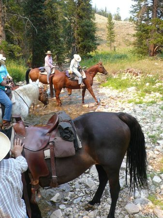 Elkhorn Ranch: It's easy to make good friends on horseback