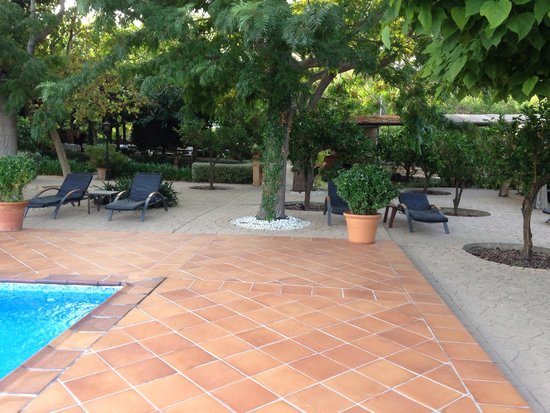 Ca's Curial: Time to really poolside