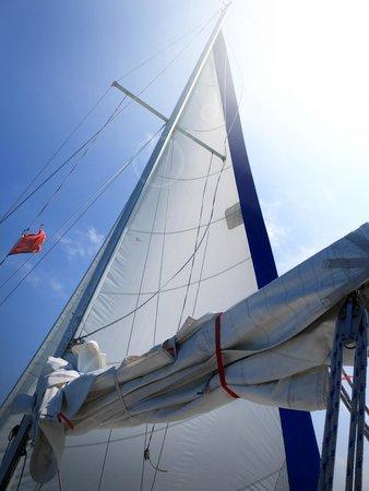 Erie Spirit Sailing Adventures : The genoa sail of the Erie Spirit