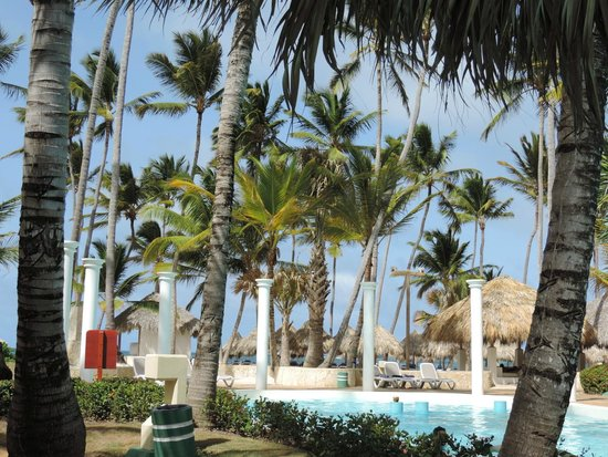 Meliá Caribe Tropical : View of the Beach from the pool!