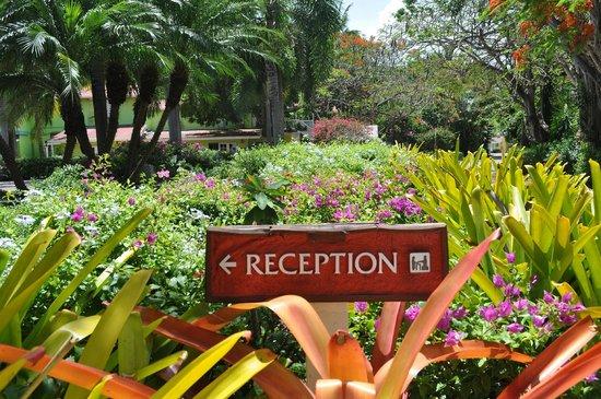 Pineapple Beach Club Antigua: to reception