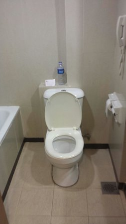 Hotel Royal Singapore: No water in the toilet