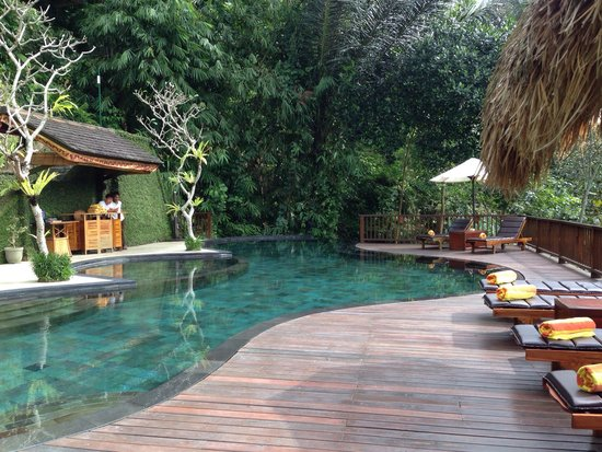 Nandini Bali Jungle Resort & Spa: Piscine