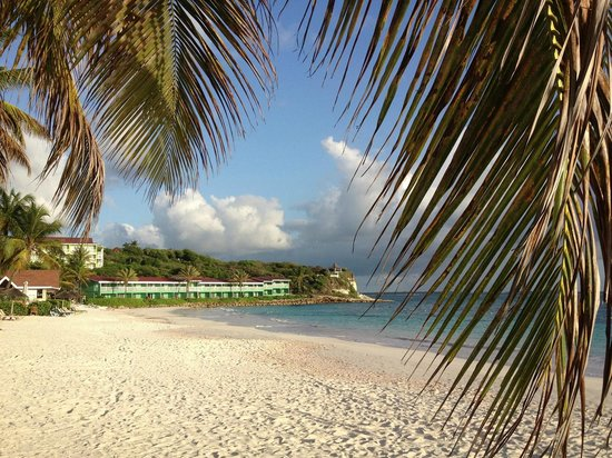 Pineapple Beach Club Antigua: through the palms