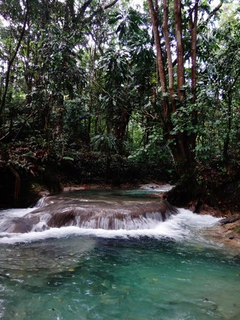 JuJu Tours: mayfield falls river walk