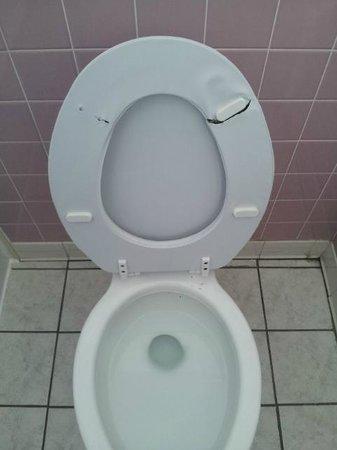 Pelham House: Broken toilet seat