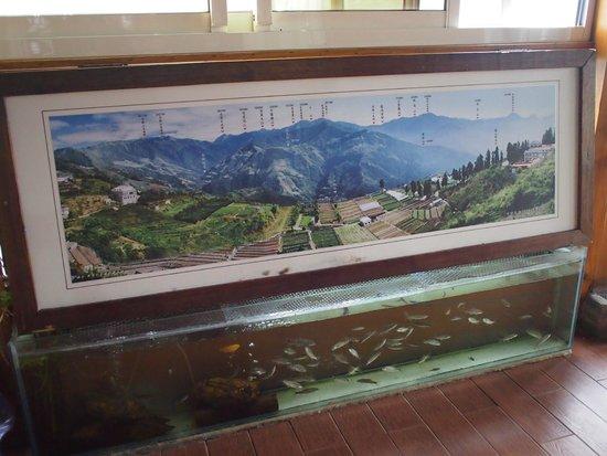 Dingdai Glass Vacation Villa : photos of the mountain