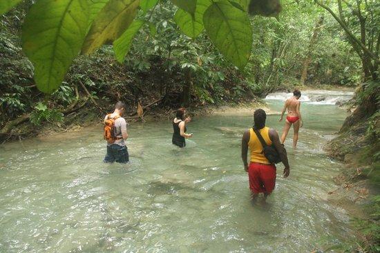 Montego Bay For Families Travel Guide On Tripadvisor