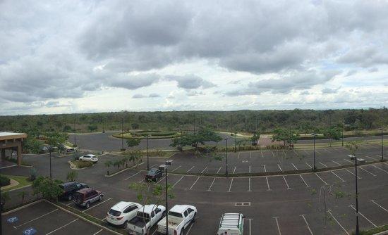 Hilton Garden Inn Liberia Airport: Vista de la sabana guanacasteca