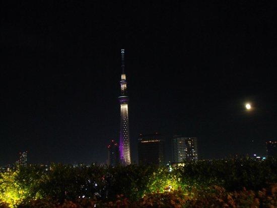 THE GATE HOTEL Asakusa Kaminarimon by HULIC: テラスから江戸紫のスカイツリー