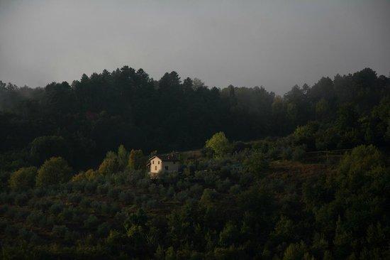 Norcenni Girasole Club : Tuscan Hillside