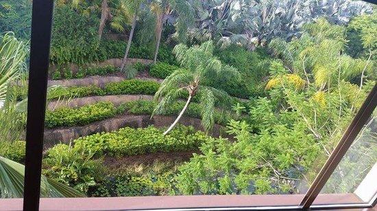 Loews Royal Pacific Resort at Universal Orlando : outside view